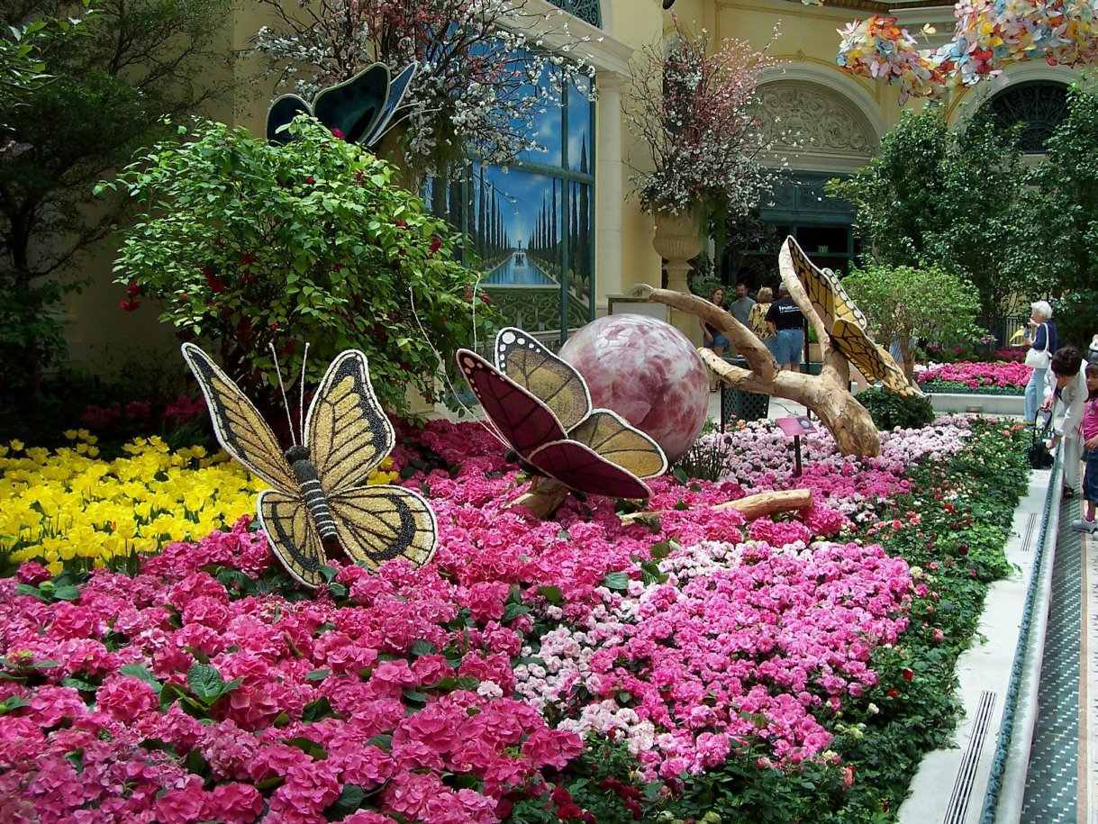 RELATED: Gardens At The Wynn Las Vegas Hotel