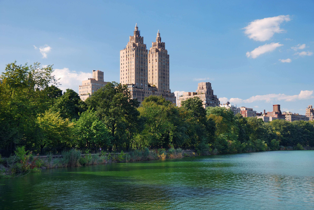 The 10 Best U.S. Cities for Urban Forests