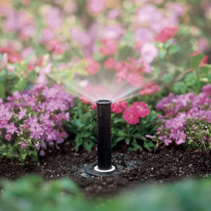 Springtime Sprinkler Tune-Up Tips