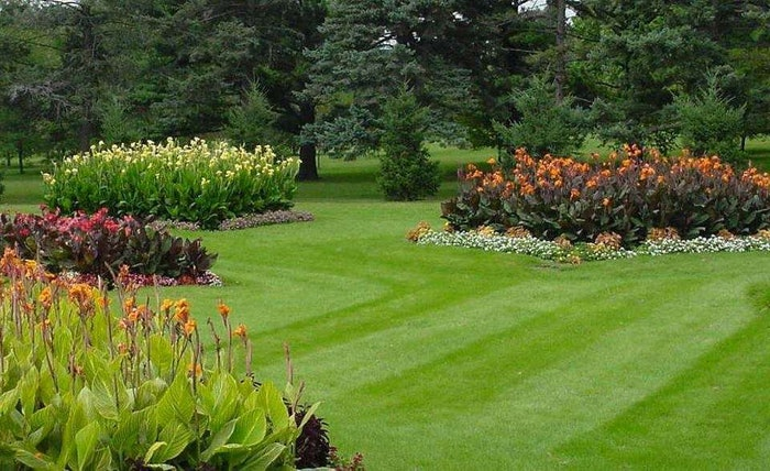 Fairway-Lawns