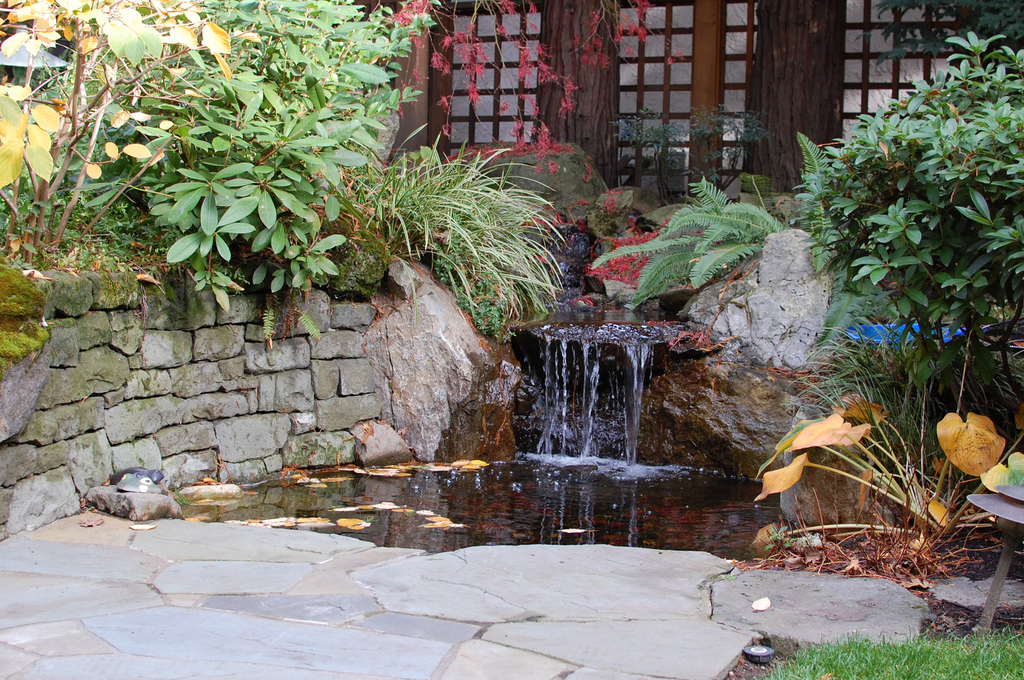 Built into a stone wall and integrated with an adjacent Bluestone patio, this project uses a small water feature surrounded by natural elements that serves as the focal point for an entry courtyard.