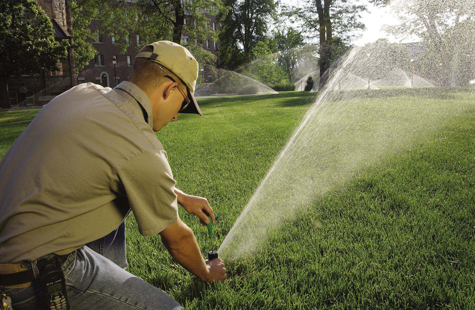 6 Tips for Summer Irrigation
