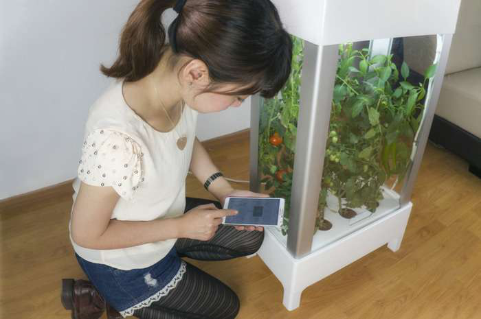 [Video] Grow Plants with a Touch of a Phone