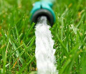 Water-use restrictions have California homeowners looking for drought-resistant landscaping