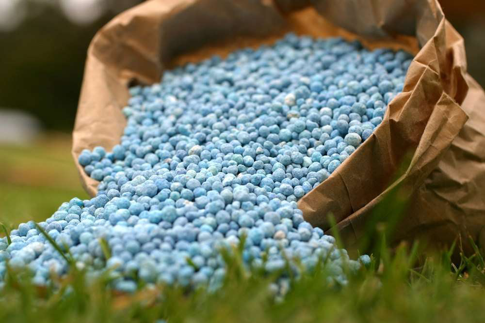 How Much Does Your Fertilizer Really Cost?