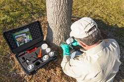 ArborSystems to Showcase Wedgle Direct-Inject Tree Treatment System