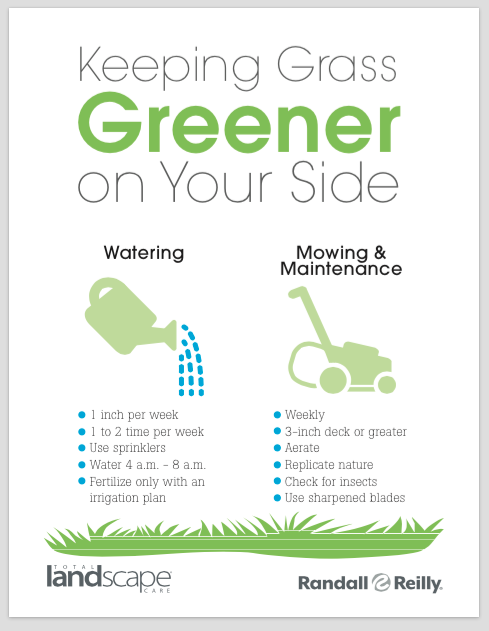 Teaching Your Customers How To Achieve Greener Grass