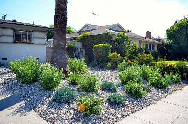 California landscapers help homeowners transition to drought-resistant lawns