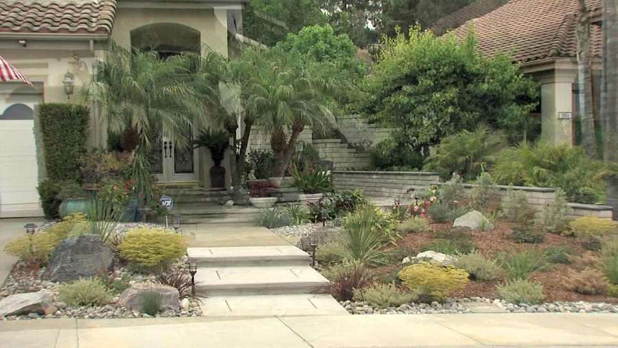 Drought Tolerant Landscaping california homeowner prevails over hoa in replacing lawn with