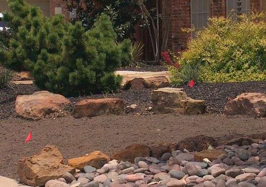 Texas landscaper's HOA forces him to remove xeriscaping