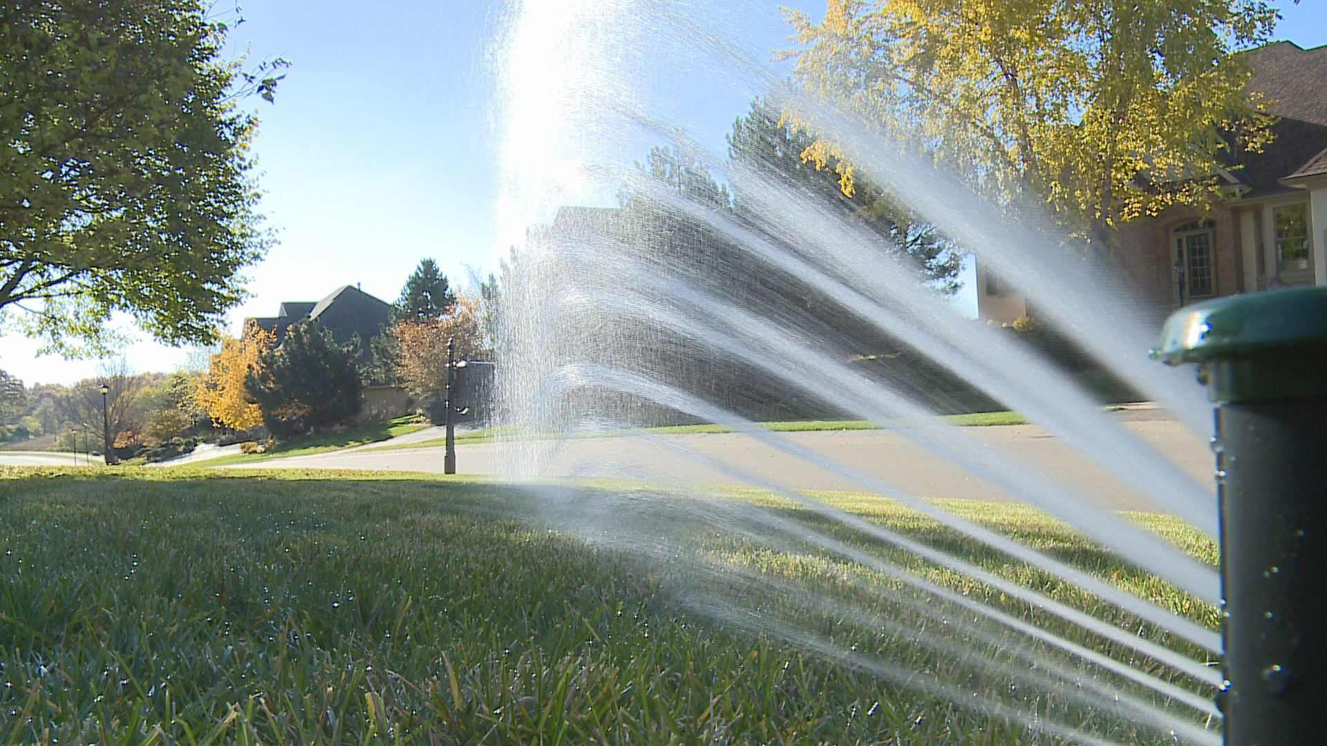 IrriGreen says its 'Genius' system puts water in precisely the right place – and nowhere else. Photo: IrriGreen.com
