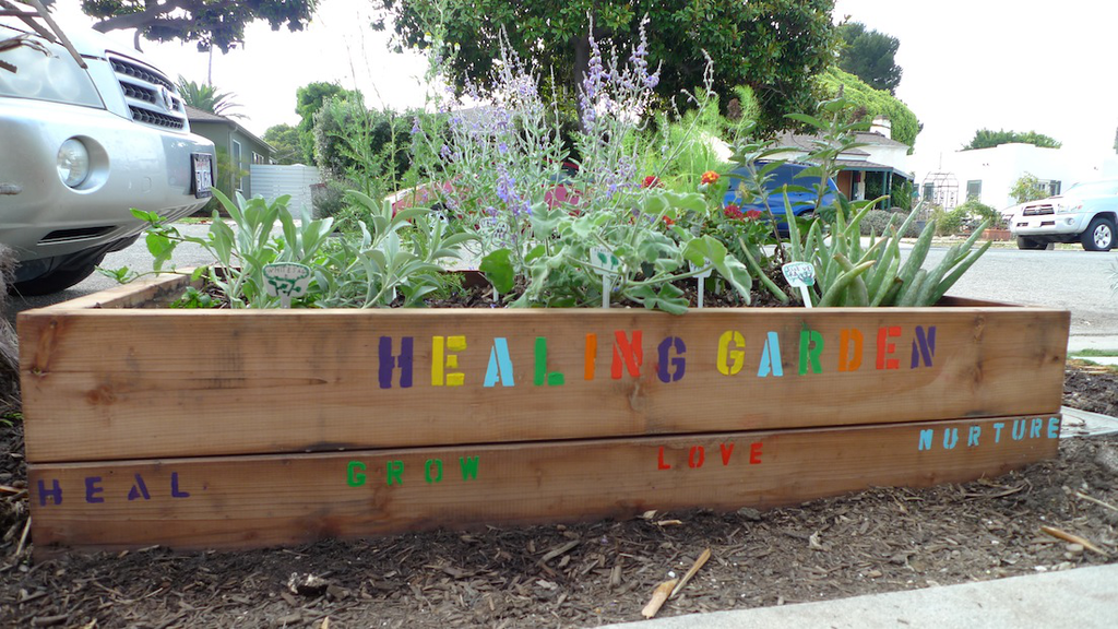 Create healing gardens clients can use for host of remedies