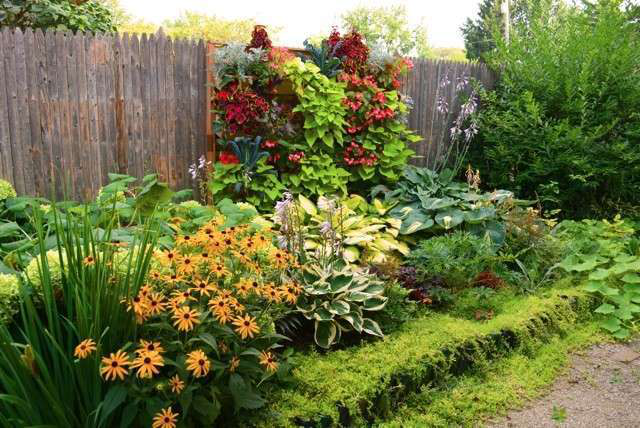 A colorful vertical garden incorporating annuals and edibles dresses up an otherwise uninspiring fence line.  Photo: Courtesy of Shawna Coronado of ShawnaCoronado.com