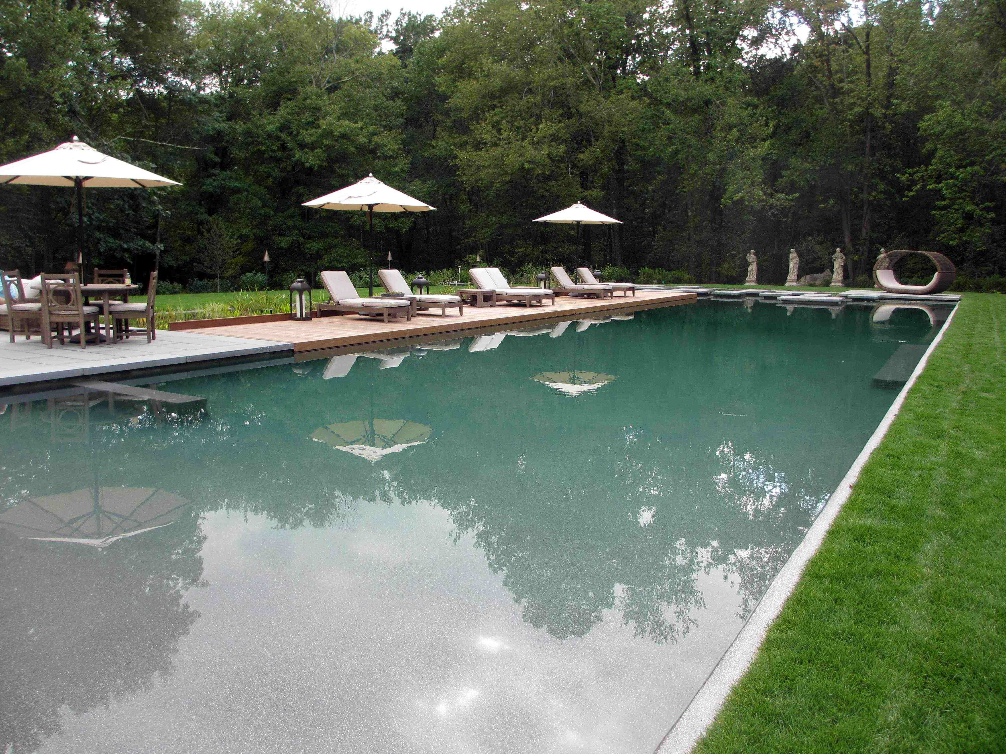 Natural Swimming Pools Becoming More Popular In The Us