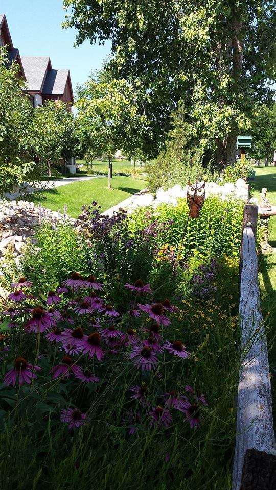 Nhla Proves Hispanic Landscape Business Owners Can Find Succcess Total Landscape Care