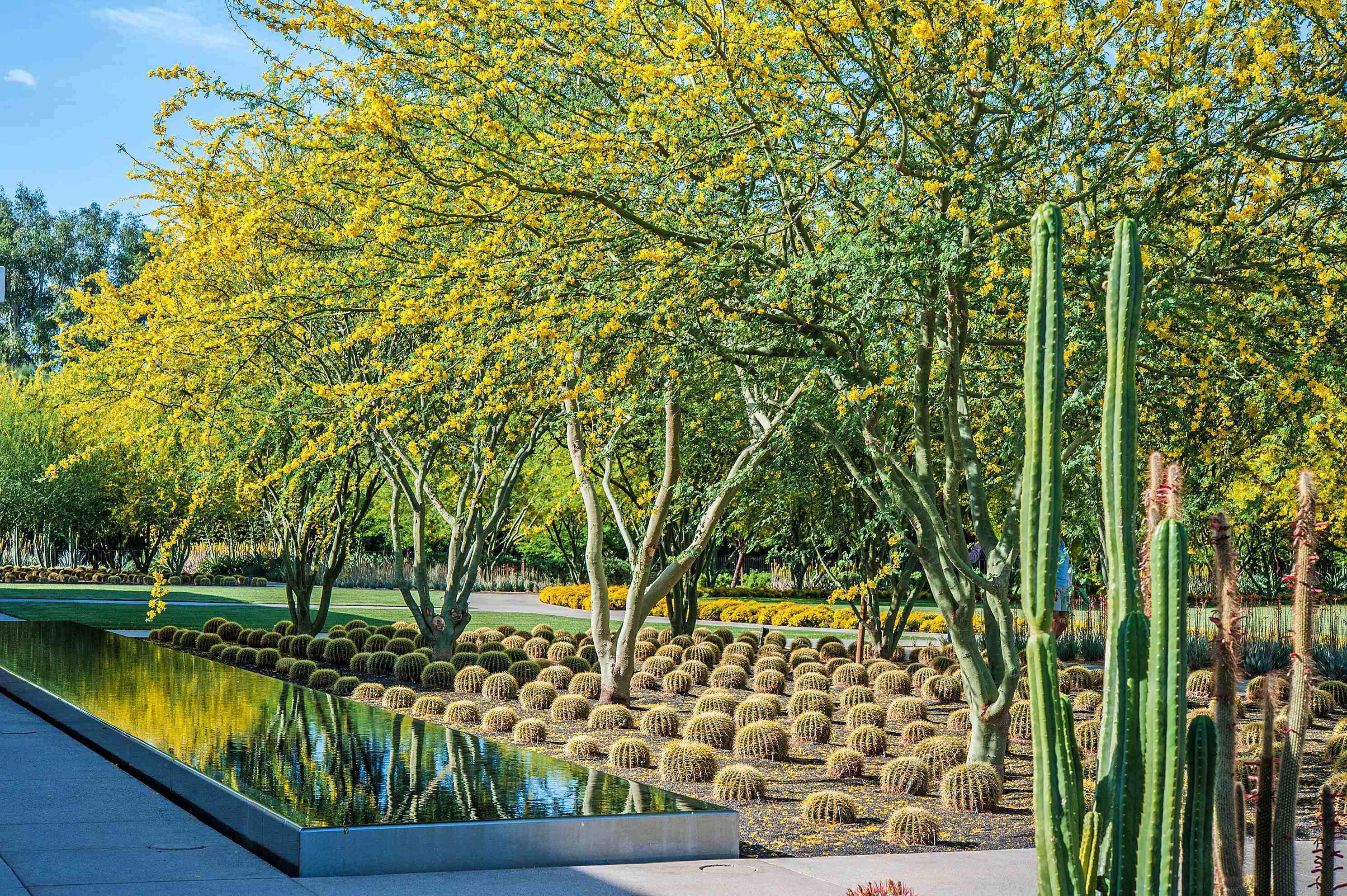 Asla features successful sustainable landscape designs for Landscape design center