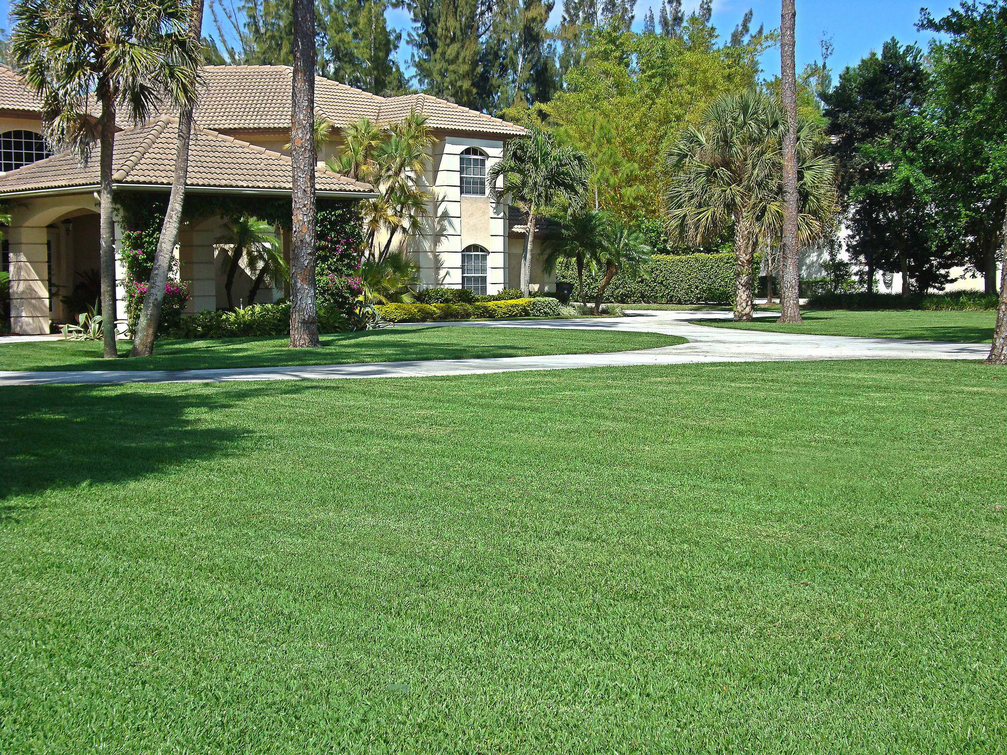 Natural Green Chemical Lawn Care