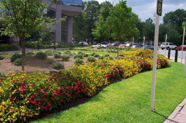 Pate Landscape Downtown Montgomery