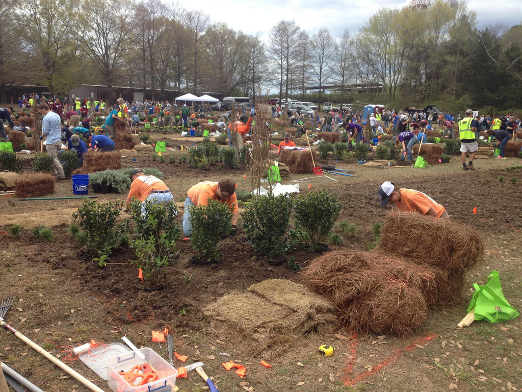 Winners announced as landscaping competition comes to a close