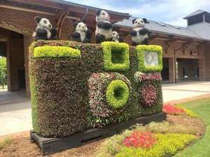 camera-topiary-scflowerfestival