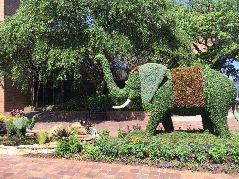 elephant-topiary-south-carolina-flower-festival