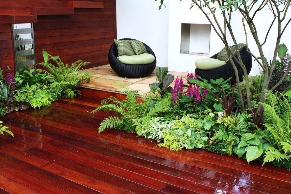 interior-plantscaping