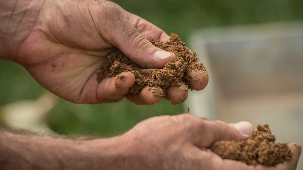Special care needed to overcome soil types' specific challenges