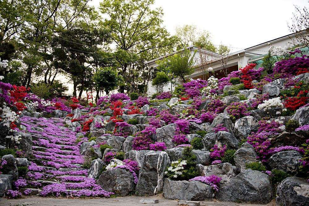 How To Create A Functional Landscape On A Slope
