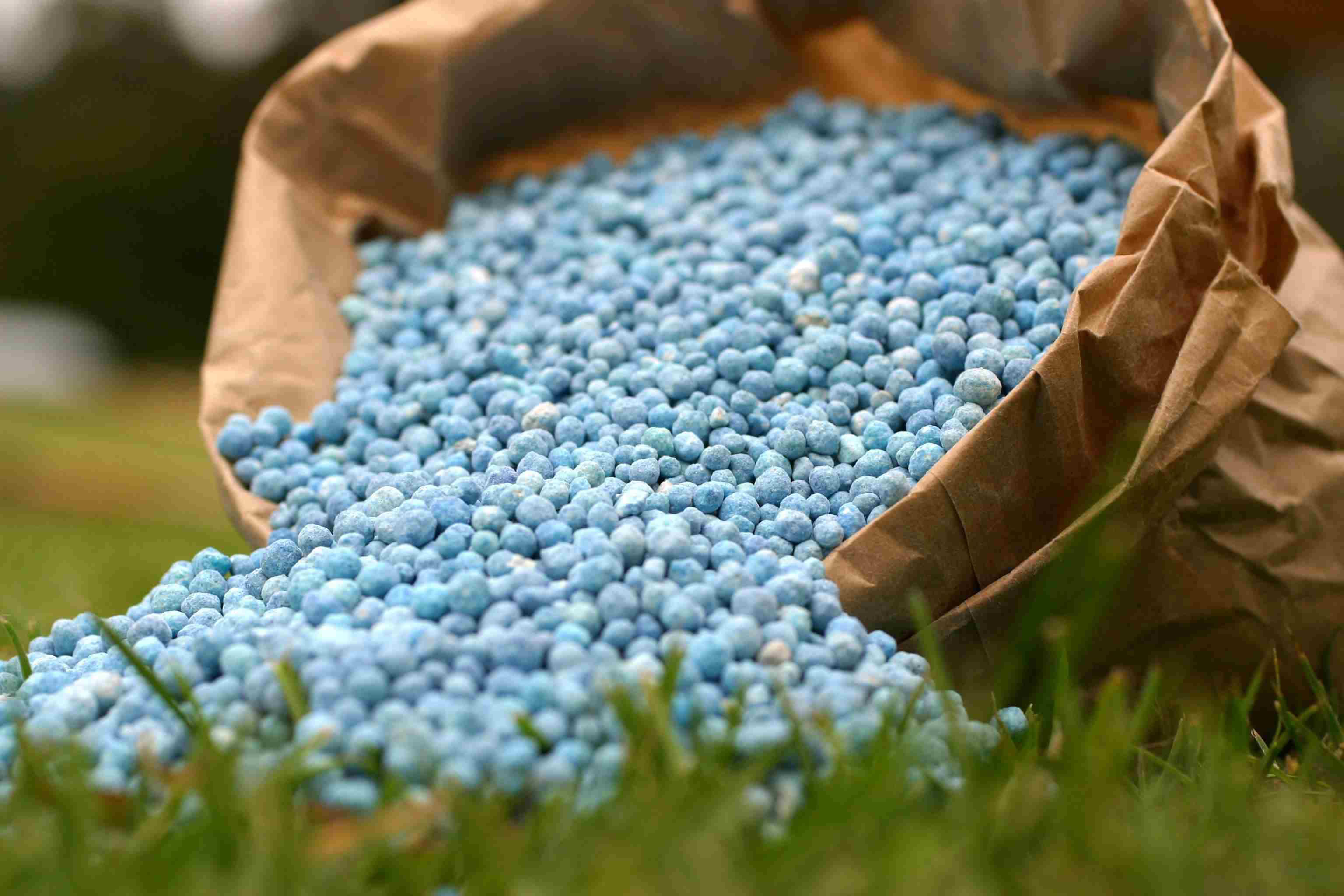 Nitrogen in Fertilizers