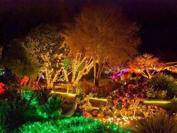 The Annual Festival Of Lights Begins Nov. 25. Photo: Mendocino Coast  Botanical Gardens