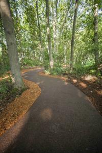 wellesley-walkway-porous-pave