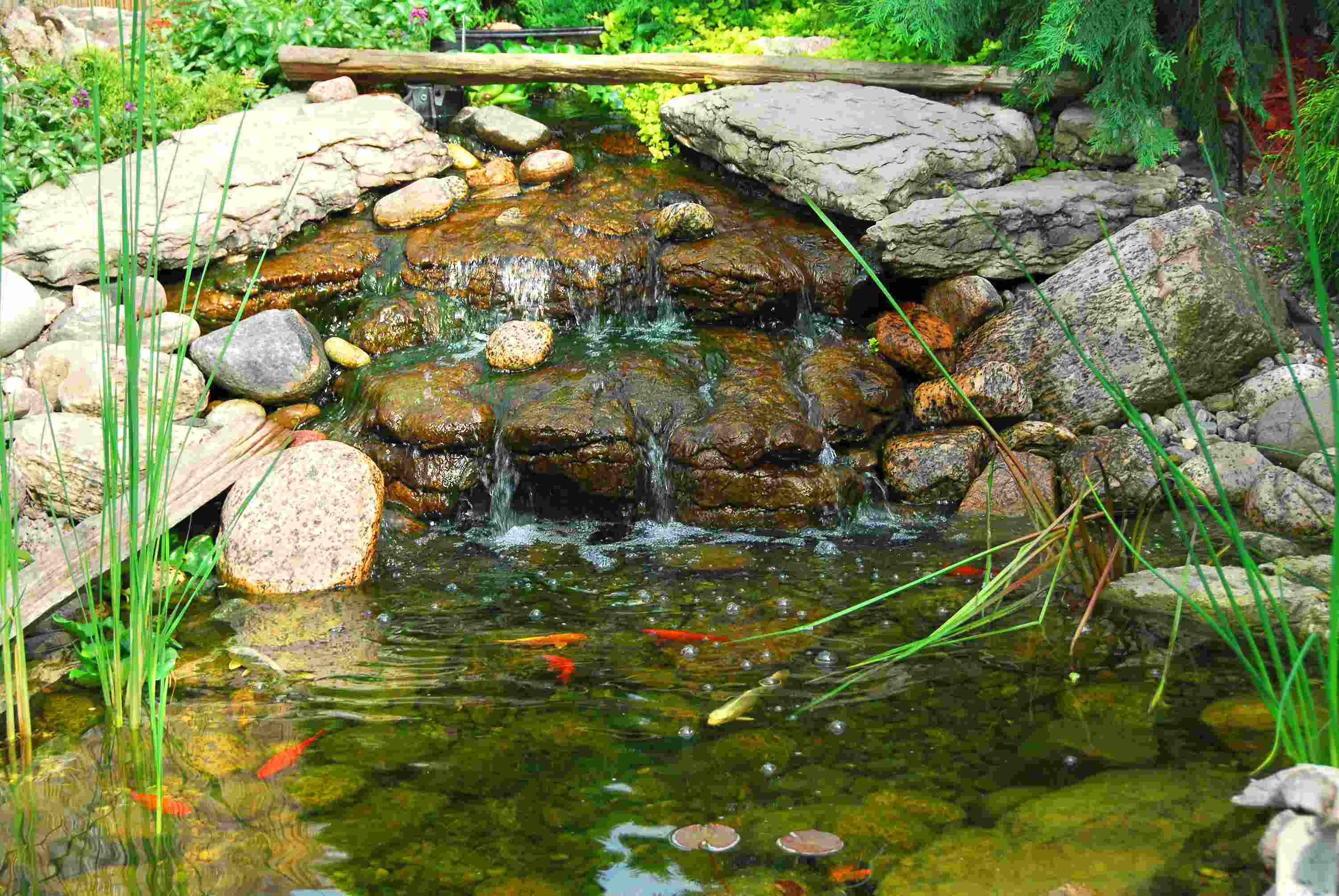 Tips to give your client on prepping their pond for winter for Pond fishing tips