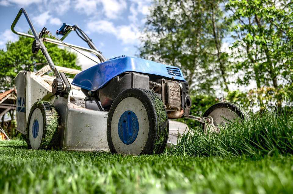 Lawnmower Mowing the Grass on the Lawn