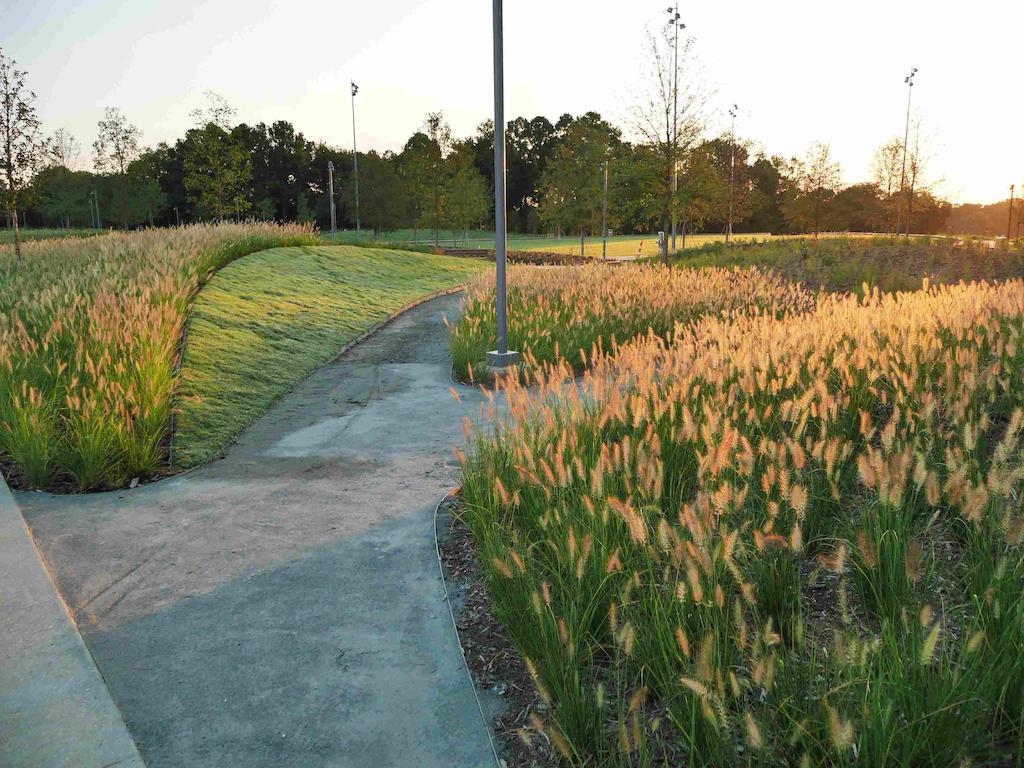North Carolina Museum of Art Wave Garden