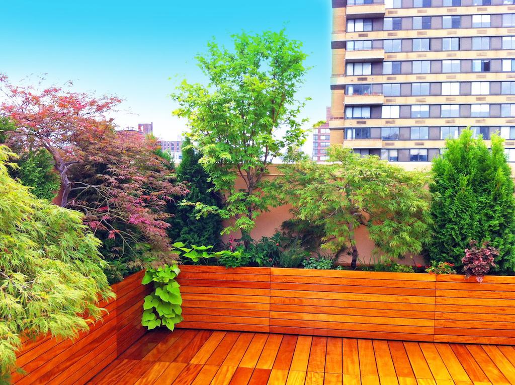 Yoga NYC Roof Deck