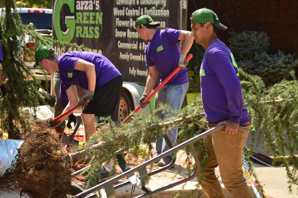 Garza Green Grass Employees at Work