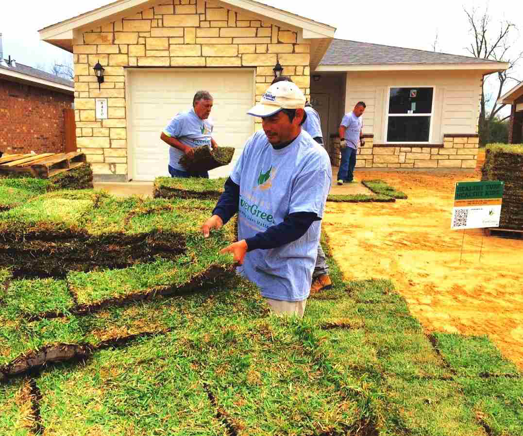 Landscaping Project North Texas: Project EverGreen Pairs With Houston Habitat For Humanity
