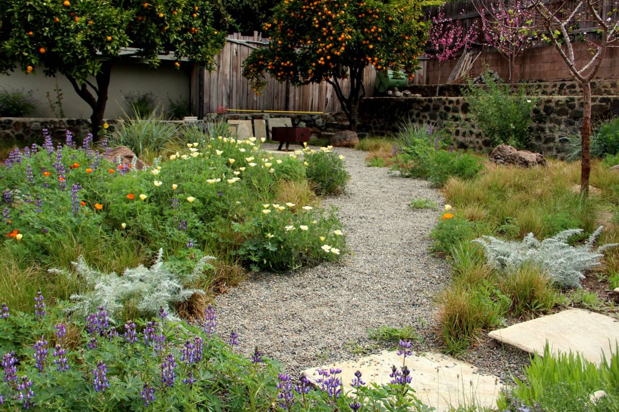How to create a wild, naturalistic style garden