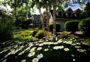 garden-in-front-of-home