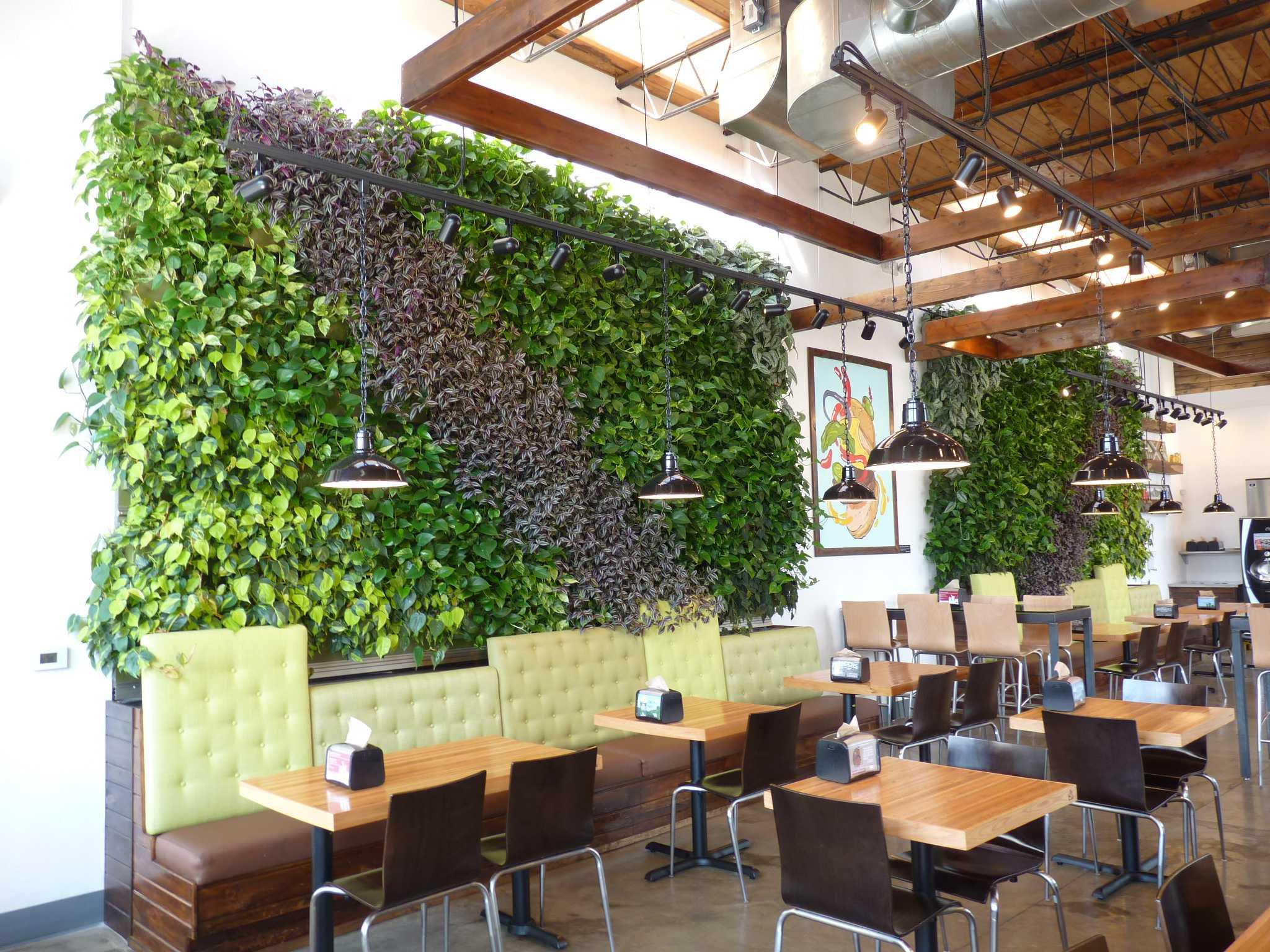 Michigan restaurant includes green walls indoors