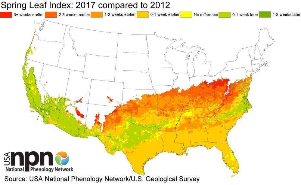 Phenology maps just how early spring is compared to the past