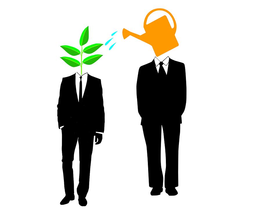 Image result for mentorship