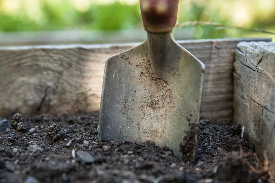 Don't forget to check and replenish soil nutrients for spring