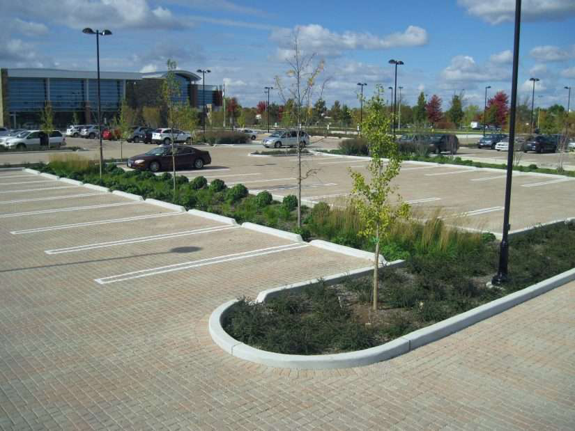 Center of Neighborhood Technology's greenery