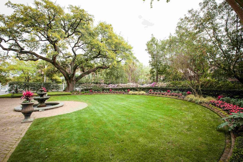 the-greenery-lawn