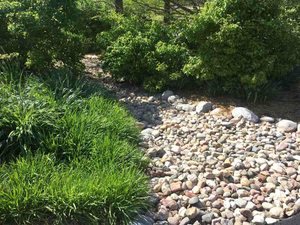 dry-stream-bed