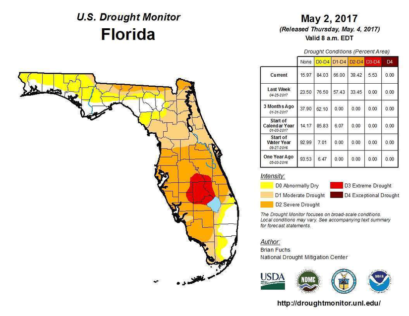Florida drought sparks wildfires and water shortages