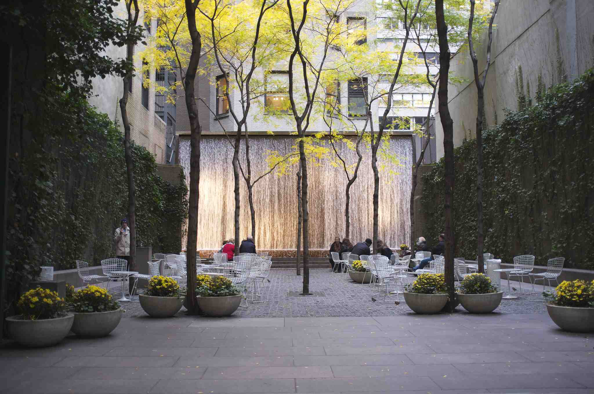Paley Park in autumn