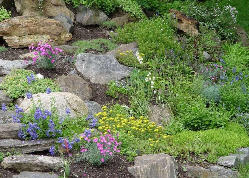 garden of rocks