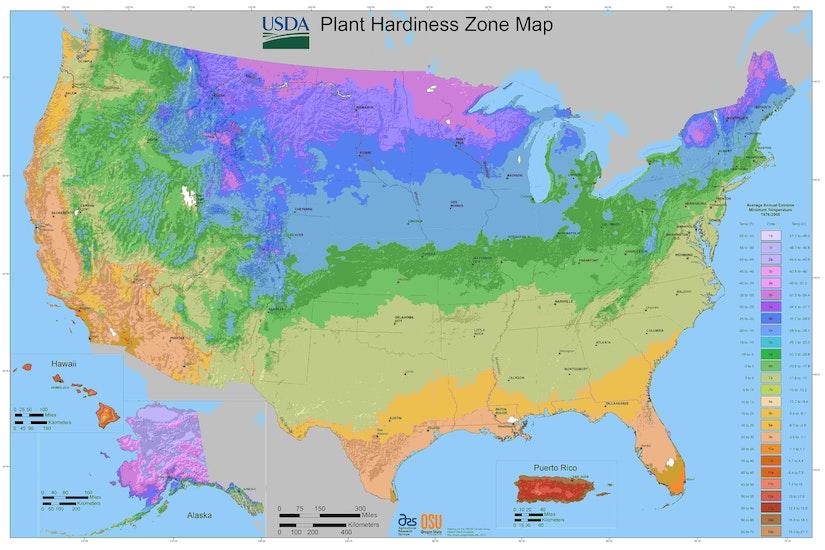 USDA-plant-hardiness-zones